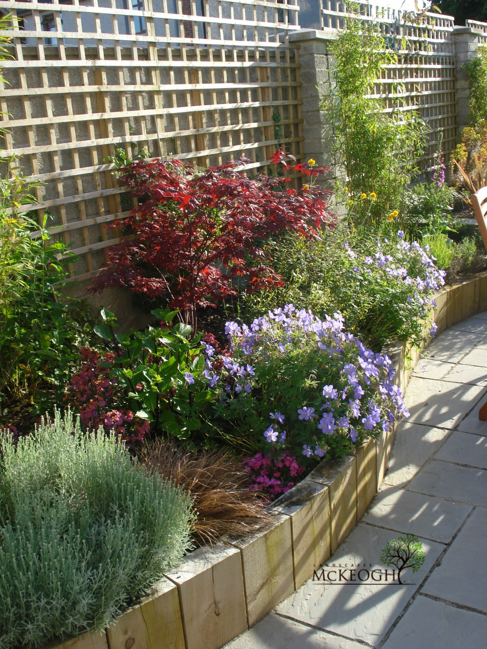 clare garden patio design and build