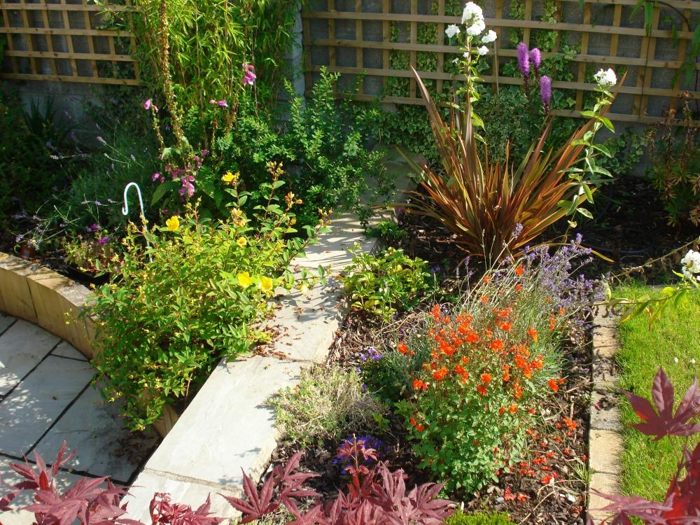 planting garden design co clare