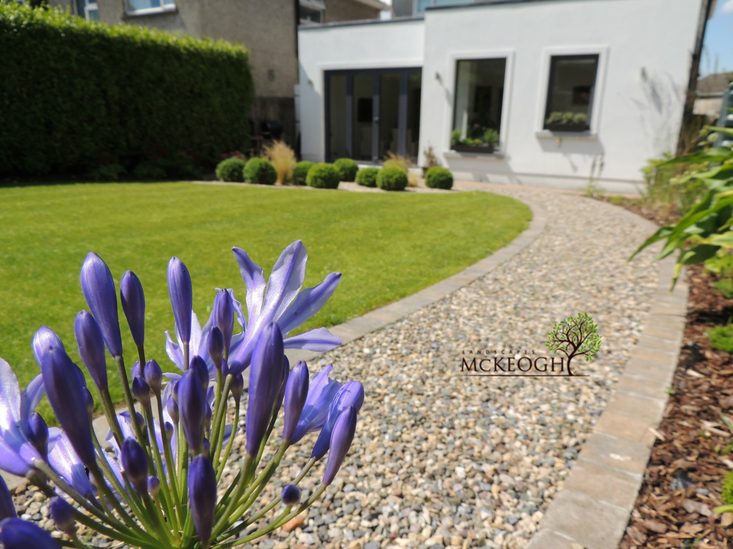 Modern style garden to complement a modern extension for Garden rooms limerick