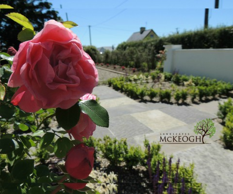 Cottage Garden – Design & Build – Co. Limerick